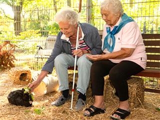 Zwei Bewohnerinnen sitzen im Kaninchengehege
